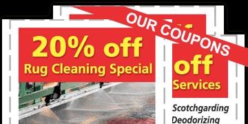 Oriental Rug Cleaning Philadelphia Area Rug Oriental