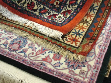 Area Rugs Haverford
