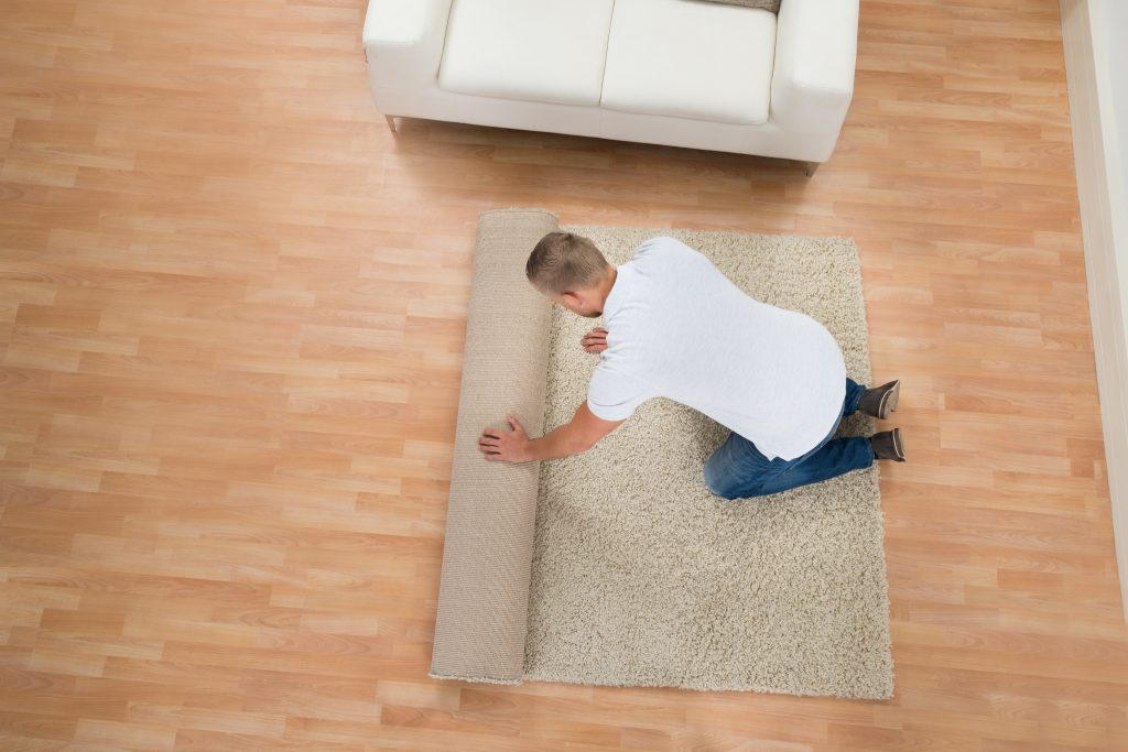 Which Is Better Carpet Or Hardwood Zakian Rugs