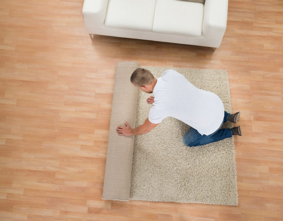 Which Is Better: Carpet or Hardwood? & Which Is Better: Carpet or Hardwood? |