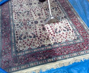 How Often Should Rugs Be Cleaned?