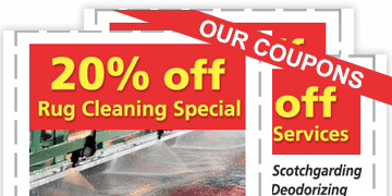 oriental rug cleaners Delaware County